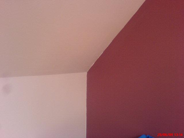 peinture-peindre-plafond-murs-portes-fenetres-acrylique-glycero ... - Peinture Glycero Sur Sous Couche Acrylique