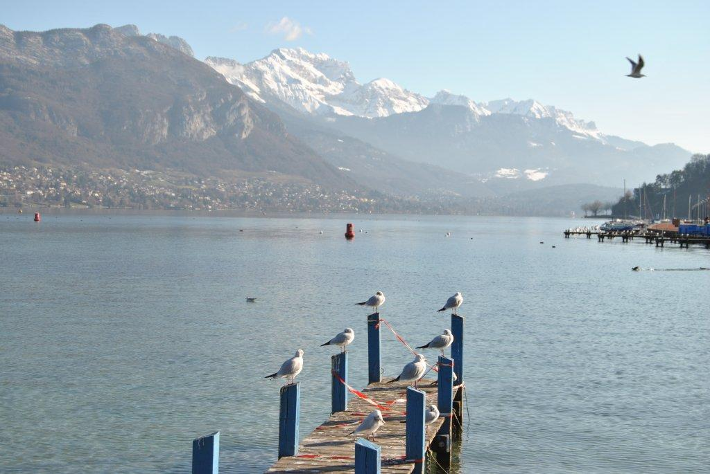 PHOTOS GRATUITES ANNECY LAC ANNECY HOTELS ANNECY